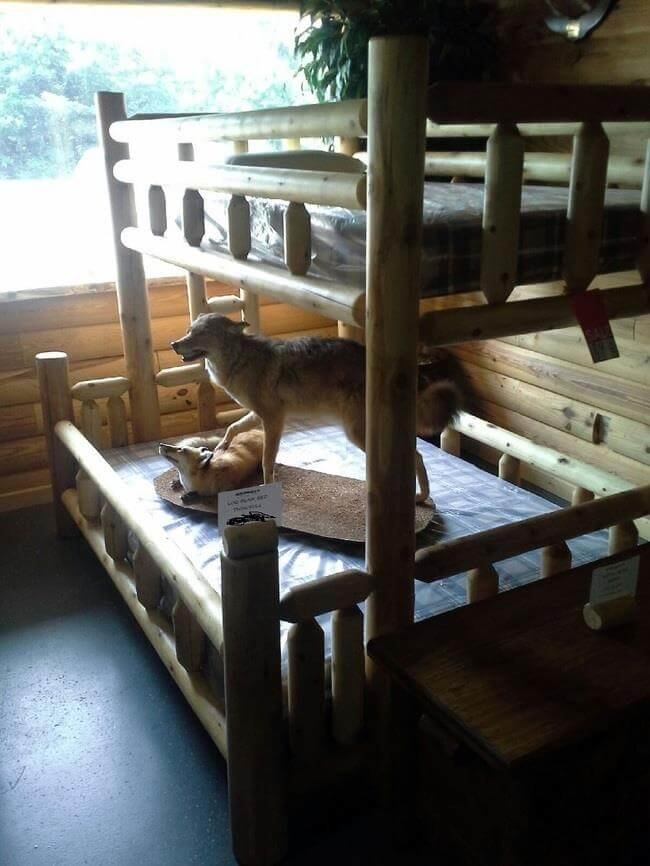 TWIN FUL LOG BUNK BED