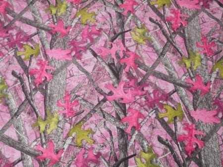 Sassy Pink